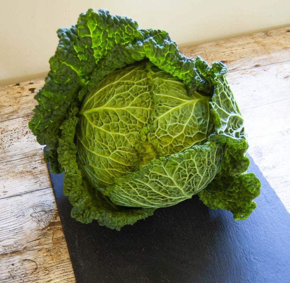 Savoy Green Cabbage (Each)